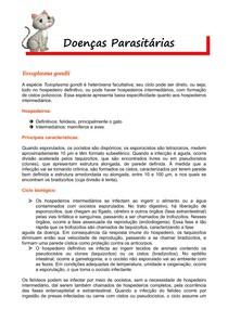 Toxoplasma gondii (Ciclo Biológico, Importância, Diagnóstico)