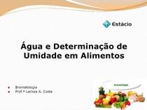 Água e Determinação de Umidade em Alimentos