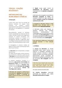 2- Metabolismo das Bilirrubinas e Icterícias