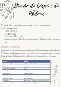 Anatomia e Fisiologia Humana - Divisão do Corpo e do Abdome