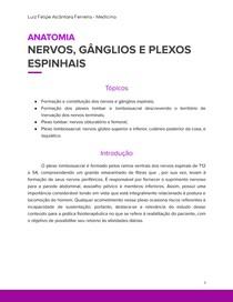 Nervos, Ganglios e Plexos Espinhais