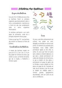 Estrutura das Bactérias