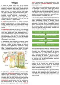 Fisiologia da Olfação