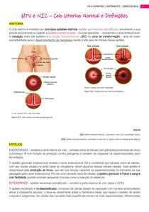 HPV e NIC