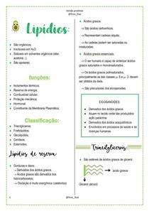 6. Lipídios