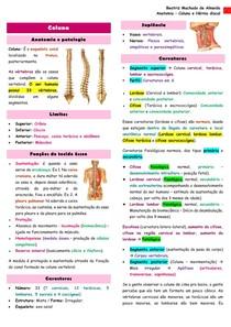 Anatomia - Coluna e Hérnia discal