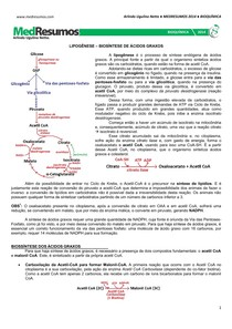 MEDRESUMOS 2014 - BIOQUÍMICA 13 - Lipogênese