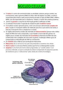 Estrutura E Função Humana Anatomia Biomédica 4