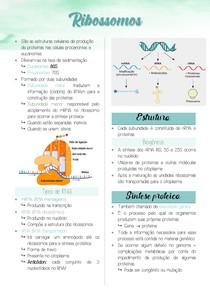 Ribossomos (síntese proteica)