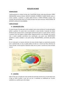 NÚCLEOS DA BASE - NEUROLOGIA/NEUROANATOMIA