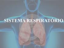 4 - Sistema Respiratório Fisioterapia PDF