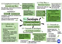 Mapa mental da terceira aula de Sociologia Organizacional