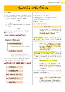 Resumo Acúmulos intracelulares