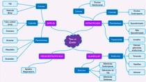 Tipos de Epitélio - Mapa mental