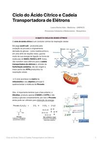 Ciclo do Ácido Cítrico e Cadeia Transportadora de Elétrons