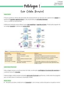 aula 5 e 6 - Patologia I