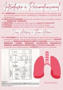 Introdução à Fisioterapia Respiratória - @biaresumosdafisio