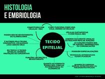 Tecido Epitelial (mapa mental)