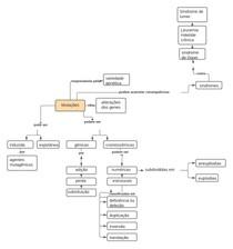 Mapa conceitual sobre mutação