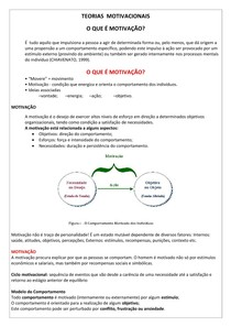 Teorias Motivacionais Resumo Pdf Integração Interdisciplinar