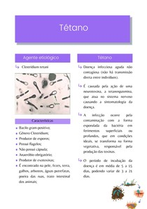 Resumo: Tetáno (Agente etiológico, doença, tratamento, epidemiologia, controle e profilaxia) - Microbiologia