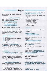 HPV PG 1