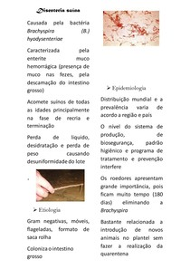 Disenteria suína