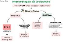 Mapa mental: classificação da urocultura