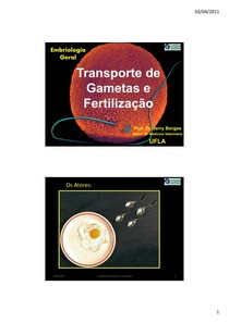 8.UFLA 2011 1 Embriologia Geral JerryBorges Transporte de Gametas e Fecundacao MINISLIDES