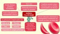 Anemia Falciforme - Por Isadora Costa