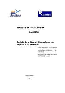 Sistema articular no estudo da Biomecânica do Esporte e Do Exercício.