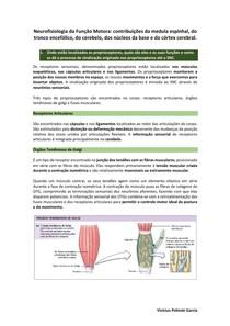 Neurofisiologia da Função Motora