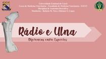 Rádio e Ulna Animal - Diferenças