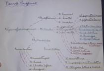 Mapa Mental - Nervo trigêmeo