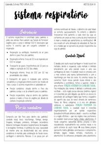 Histologia do Sistema Respiratório resumo gartner medicina UFBA