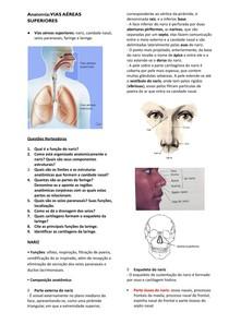 Vias aéreas superiores - Anatomia docx
