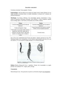 condylomata acuminata en zwangerschap mijloace pentru îndepărtarea verucilor genitale și papiloamelor