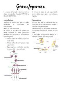 Gametogênese, embriogênese, anexos embrionários e hormônios