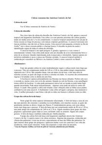 MANUALDESOBREVIVÊNCIAPARTE05