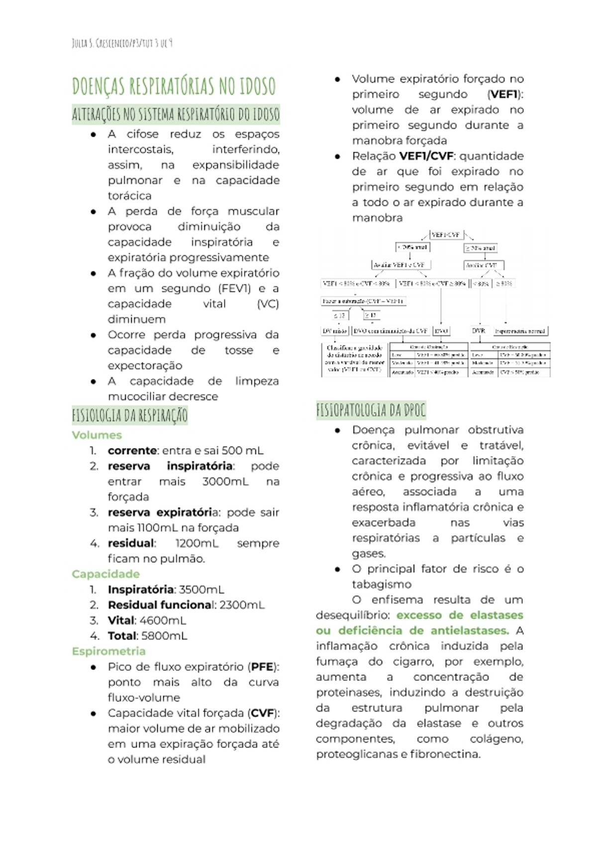Pre-visualização do material Doenças respiratórias no idoso e critérios de intubação e traqueostomia - página 1