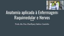 Aula sequencial 2  Anatomia aplicada à Enfermagem  Raquimedular e Nervos