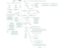 Mapa Mental - Pâncreas Endócrino