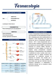 Farmacologia do Sistema Nervoso Autônomo e Anti-hipertensivos.