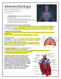 ANATOMOFISIOLOGIA    Sistema Cardiovascular