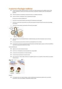 Anatomofisiologia vestibular e patologias associadas