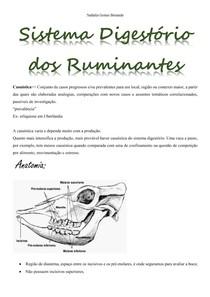 Sistema Digestório dos Ruminantes - Semiologia
