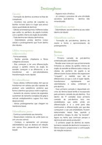 Dentinogênese - Histologia - Odontologia