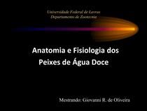 anatomiapeixe (1)