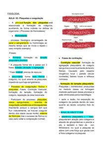 Plaquetas e coagulação