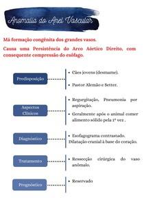 Anomalia do Anel Vascular